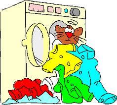 Detersivo ecologico lavatrice