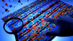 Banche dati DNA