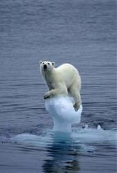 Climaallarmismo1.1