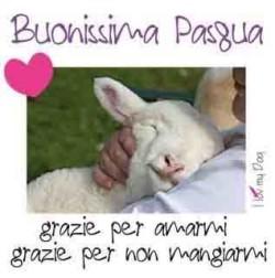 Pasqua consapevole senza agnello