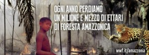 Appello WWF