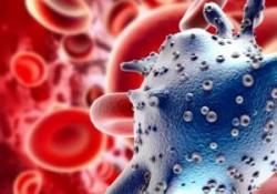 Nano particelle nel cibo