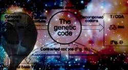 Codice genetico 1.1