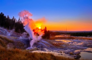 Parco di Yellowstone