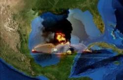Ecosistema Golfo Messico