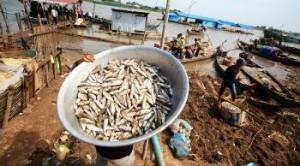 Bimbi schiavi in Thailandia