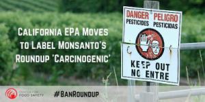 California bandisce il Roundup della Monssanto