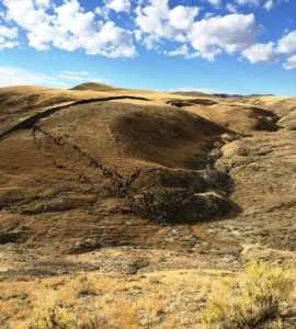 crepaccio Monti Bighorn