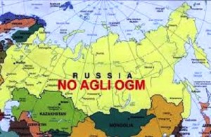 Russia no ogm