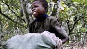 bambini sfruttati dalle piantagioni di cacao