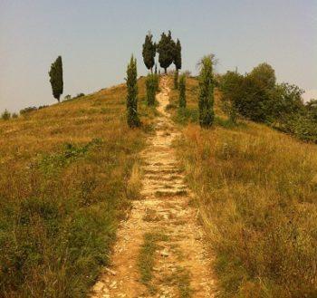 Piramidi di Montevecchia - collina dei cipressi
